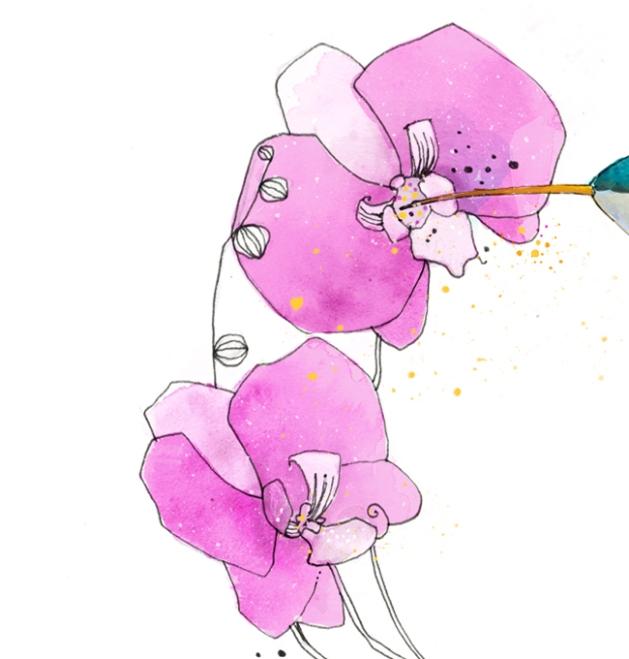 orchid_closeup
